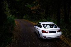 Luxury white car in the dark forest Stock Images