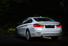 Luxury white car in the dark forest stock photo