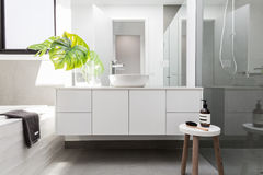 Luxury white family bathroom styled with greenery Stock Image