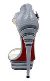 Luxury woman fashion shoe Royalty Free Stock Photography