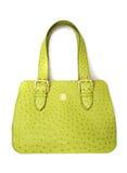 Luxury women bag Royalty Free Stock Photo