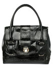 Luxury women bag Stock Images