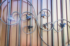 Luxury Wrought Iron Fence Detail Stock Image