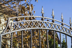 Luxury Wrought Iron Fence Detail Royalty Free Stock Photo