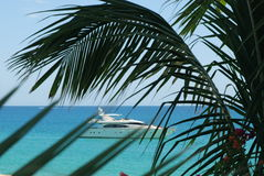 Luxury Yacht 3. Luxury Yacht in turquoise water with palms in front stock photo
