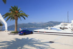 Luxury yacht and sports car Royalty Free Stock Images