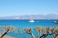 Luxury yacht, turquoise Aegean Sea and cut trees Royalty Free Stock Images