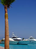 Luxury yachts 03. Luxury yachts berthed at the sekalla port in hurghada royalty free stock photography