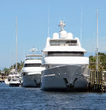 Luxury yachts. Docked in Fort Lauderdale, Florida royalty free stock photos