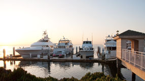 Luxury yachts bathed in the morning light Royalty Free Stock Photography