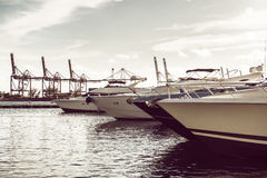 Luxury yachts in the bay near ocean port of Miami Beach Stock Image