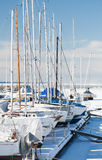 Luxury yachts on the coast in winter Royalty Free Stock Photos