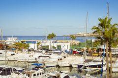 Luxury yachts on the dock at the yacht club Puerto Colon, Costa Royalty Free Stock Photo