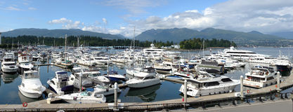 Luxury Yachts In A Marina , Vancouver BC. Stock Photography