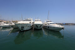 Luxury yachts in the marina Stock Image