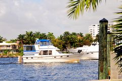 Luxury yachts in marina, South Florida Stock Photography