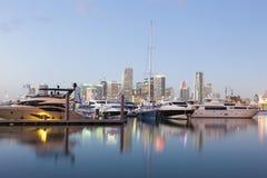 Luxury yachts in Miami, USA Stock Photos
