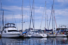 Luxury yachts moored in harbor Royalty Free Stock Photography