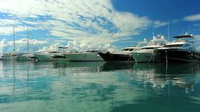 Luxury yachts moored on pier stock video
