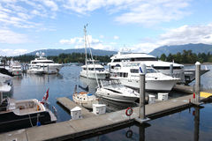 Luxury yachts & sailboat moored rina, Vancouver BC. Luxury yachts & sailboat moored in a marina, Vancouver BC Canada Royalty Free Stock Images