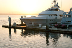 Luxury yachts at sunrise in coronado Royalty Free Stock Images