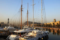 Luxury yachts at sunset Royalty Free Stock Image