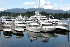 Luxury yachts in Vancouver BC marina. Canada. Stock Photos