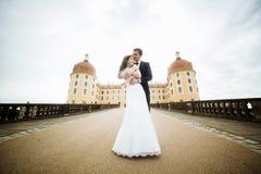 Luxus heiratete die Hochzeitspaare, -braut und -bräutigam, die in der alten Stadt aufwerfen stockfoto