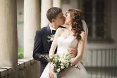 Luxus heiratete die Hochzeitspaare, -braut und -bräutigam, die in der alten Stadt aufwerfen stockbild