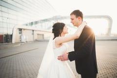Luxus heiratete die Hochzeitspaare, -braut und -br?utigam, die in der alten Stadt aufwerfen lizenzfreies stockbild