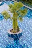 Luxus-Resort mit schönem Pool und fantastischem Ozean Lizenzfreie Stockbilder