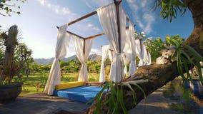 Luxus-sunbeds mit weißen Vorhängen nähern sich Swimmingpool, Bergen und Frangipani stock footage