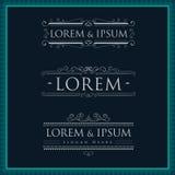 Luxuslogoschablonen-Kalligraphie Flourishes Stockfoto