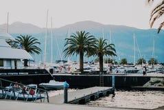Luxuty seglar i Porto Montenegro Elitområde av Tivat Arkivbild