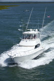 LuxuxFischerboot des sports lizenzfreie stockbilder