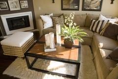 Luxuxhauptwohnzimmer. Lizenzfreies Stockbild