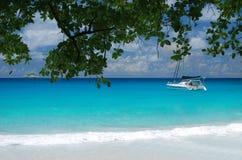 Luxuxkatamaran, das nahe einem tropischen Strand segelt lizenzfreies stockfoto