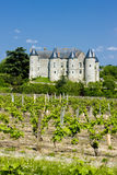 Luynes Castle. With vineyard, Indre-et-Loire, Centre, France Stock Images