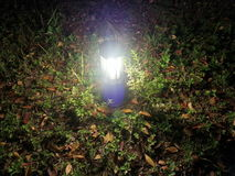 Luz à terra Imagens de Stock Royalty Free