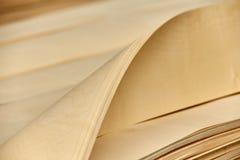 Luz abstrata - folha de folheado marrom Imagem de Stock