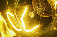 Luz amarela Fotografia de Stock