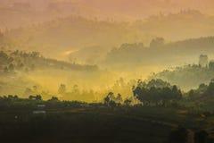Luz amarela delicada e névoa clara sobre os montes no lado do país com casas tradicionais e na natureza tropical de Uganda imagens de stock royalty free