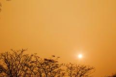 Luz anaranjada hermosa de la salida del sol Fotografía de archivo libre de regalías