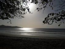 Luz brillante del sol Fotos de archivo libres de regalías