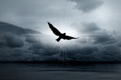 Luz brumosa en cielos y pájaro stock de ilustración