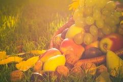 Luz completa de la puesta del sol de la hierba de las frutas de la cesta Foto de archivo