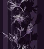 Luz - contorno violeta de flores da magnólia em um galho e em um vertical Foto de Stock