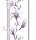 Luz - contorno violeta de flores da magnólia em um galho e em um vertical Imagem de Stock Royalty Free