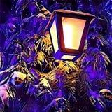 Luz da árvore de Natal Foto de Stock