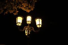 Luz da cidade de Pádua em Itália PADUA Foto de Stock